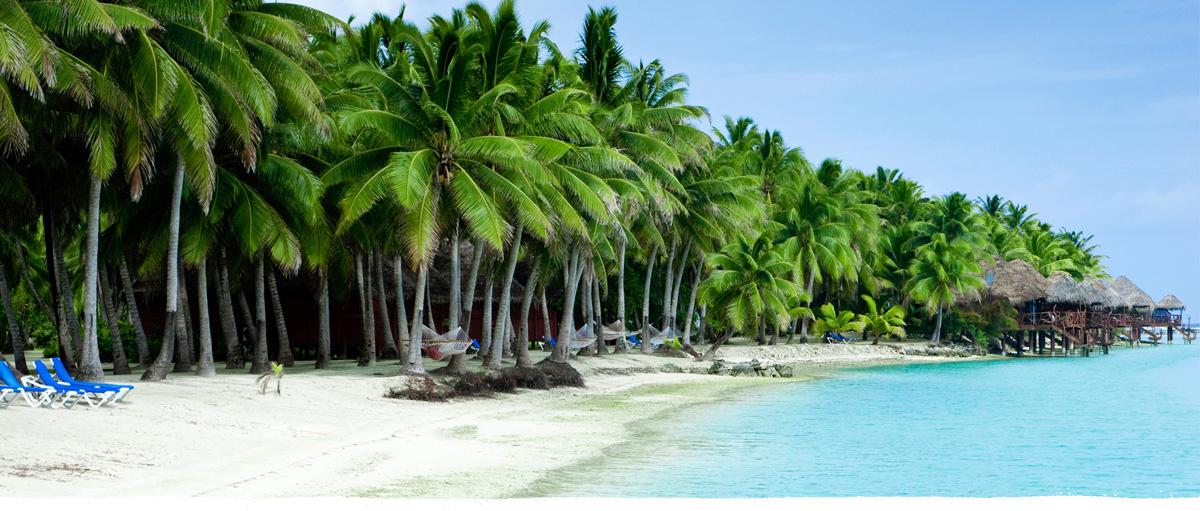 Cocobella Coconut Water Blog